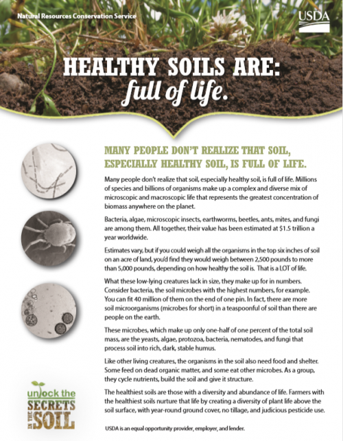 Healthy Soils Are Full Of Life USDA