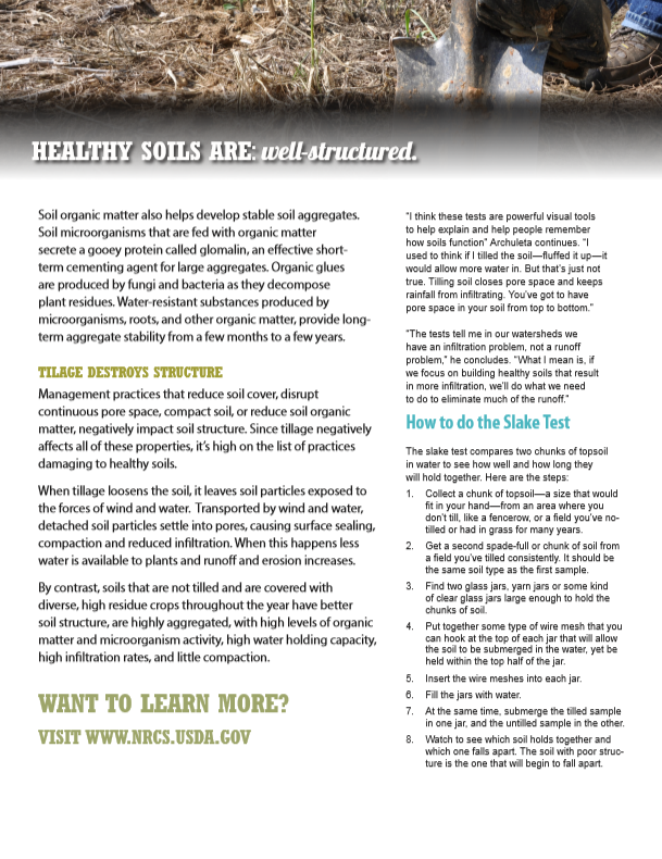 Healthy Soils Are Well Structured